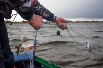 Rendi paat Mesi tarest ja veeda päev Peipsil kala püüdes