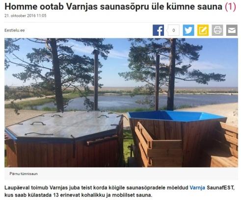 varnja-saunafest-vol-2-delfis