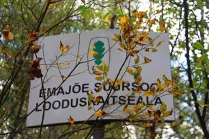 Peipsiveere looduskaitseala Varnjas