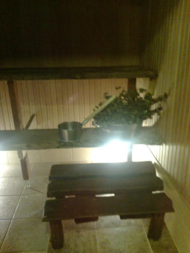 rehe-talu-saun-1