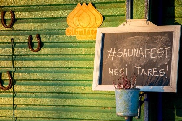 Varnja saunafEST 20.08.2016