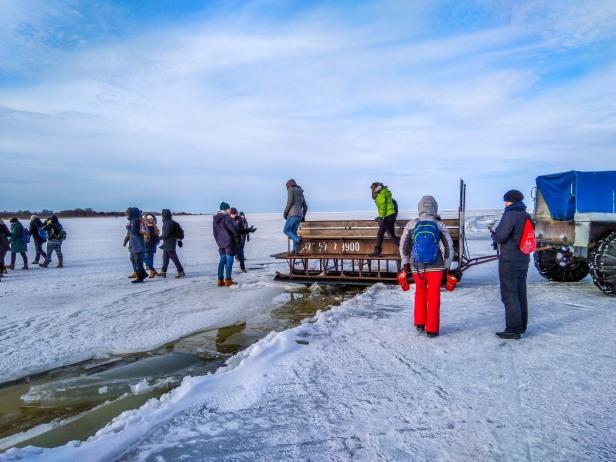 Aitasime safariseltskonna üle Peipsi järve lahvanduse, tehes karakatisaanist improviseeritud silla. Kõigile sobis!