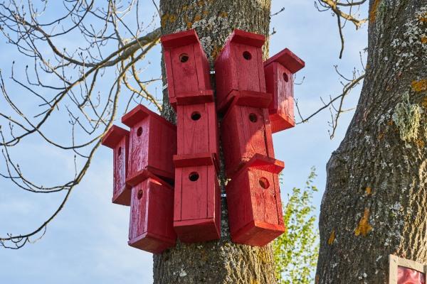 lindude elamukvartal